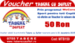 VoucherTS2015.3